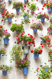 蓝色花盆和红色花在白色墙壁上有葡萄酒lan的 库存图片