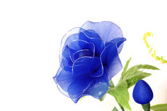 蓝色花 免版税库存照片