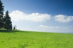 蓝色草甸天空 库存照片
