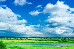 蓝色草甸天空 图库摄影