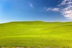 蓝色草绿色palouse天空华盛顿麦子 库存图片
