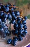 蓝色葡萄的枝杈在一块玻璃的在板材,未加工的食物 免版税库存照片