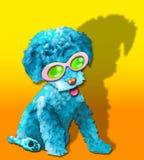 蓝色蓬松glamor小狗 库存照片