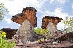 蓝色蘑菇天空石头 库存照片