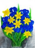 蓝色虹膜和黄色daffodiles 免版税图库摄影