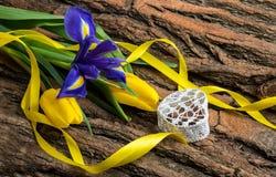 蓝色虹膜和黄色郁金香开花与装饰心脏 免版税库存图片
