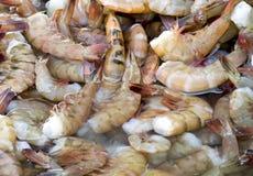 蓝色虾 免版税图库摄影