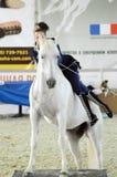 蓝色衣服的妇女骑师得到白马 国际马陈列 免版税库存图片