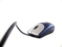 蓝色被捆绑的鼠标 免版税库存照片