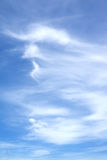 蓝色覆盖蓬松天空白色 免版税库存图片
