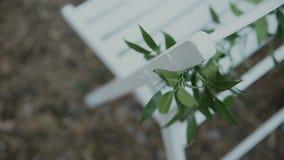 蓝色详细资料花袜带系带婚礼 美丽的花decration 所有所有构成要素花卉例证各自的对象称范围纹理导航 股票视频