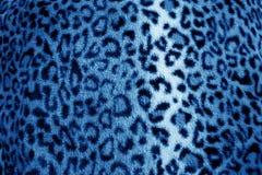 蓝色豹子动物印刷品毛皮样式-织品 免版税库存照片