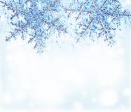 蓝色边界装饰雪花 免版税库存图片