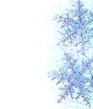 蓝色边界装饰雪花 库存图片