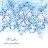蓝色边界装饰雪花 库存照片
