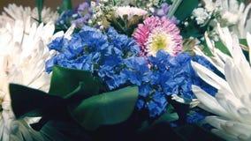 蓝色野花和五颜六色的菊花 图库摄影