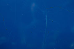 蓝色金属背景纹理 免版税库存照片