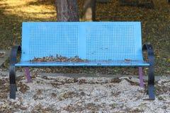 蓝色金属长的椅子在公园 库存照片