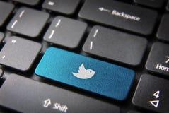 蓝色键盘慌张鸟钥匙,社会网络背景 免版税库存图片