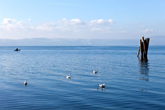 蓝色镇静水- Bracciano湖 免版税库存照片