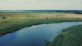 蓝色镇静河反射白色天际鸟瞰图的云彩绿色密集的森林 股票录像