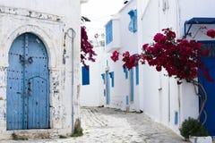 蓝色门、窗口和大厦白色墙壁在西迪布赛义德 库存图片