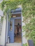 蓝色门户开放主义常春藤覆盖有在葡萄酒工业cofee的看法 免版税库存照片