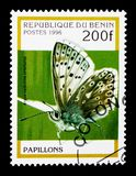 蓝色阿格斯(Ultraaricia anteros),蝴蝶serie,大约1996年 图库摄影