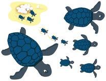 蓝色集合乌龟 免版税库存照片
