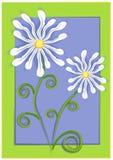 蓝色雏菊绿化白色 皇族释放例证