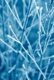 蓝色霜纹理 库存图片