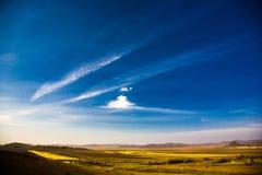 蓝色颜色金黄大草原黄色 库存图片