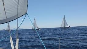 蓝色颜色黑暗的losed赛船会航行航行天空体育运动赢利地区 乘快艇 豪华游艇行在小游艇船坞船坞的 体育运动 股票视频