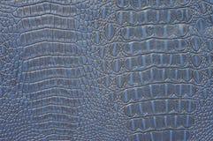 蓝色鳄鱼皮革 库存照片