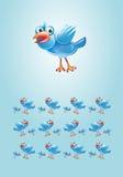 蓝色鸟背景 免版税库存图片