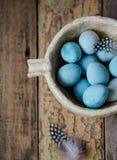 蓝色鹌鹑复活节彩蛋和羽毛 库存照片