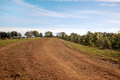 蓝色黏土农厂红色路天空 免版税库存照片