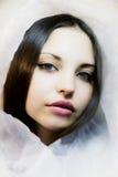 蓝色黑眼睛女孩围巾丝绸 图库摄影