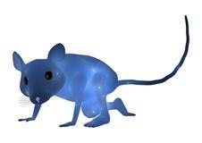 蓝色鼠标 免版税库存照片