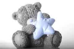 蓝色鼻子熊 免版税图库摄影