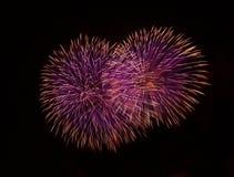 蓝色,紫罗兰色与红色五颜六色的烟花在黑背景中,艺术性的烟花在马耳他,马耳他在黑暗的天空后面的烟花节日 免版税库存照片