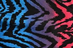 蓝色,紫色,桃红色斑马样式 库存图片