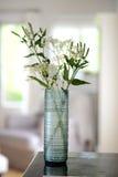 蓝色玻璃花瓶 库存照片