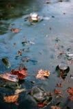 蓝色冻结的冰离开槭树河冬天 免版税库存照片