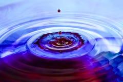 蓝色紫色食用染料水下落 库存照片