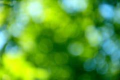 蓝色bokeh绿色 免版税库存照片