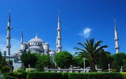蓝色camii伊斯坦布尔清真寺 免版税图库摄影