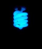 蓝色CFL电灯泡 图库摄影