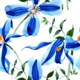 蓝色durandii铁线莲属 花卉植物的花 无缝的背景模式 织品墙纸印刷品纹理 库存例证