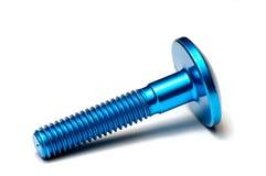 蓝色ergal螺丝 免版税库存图片